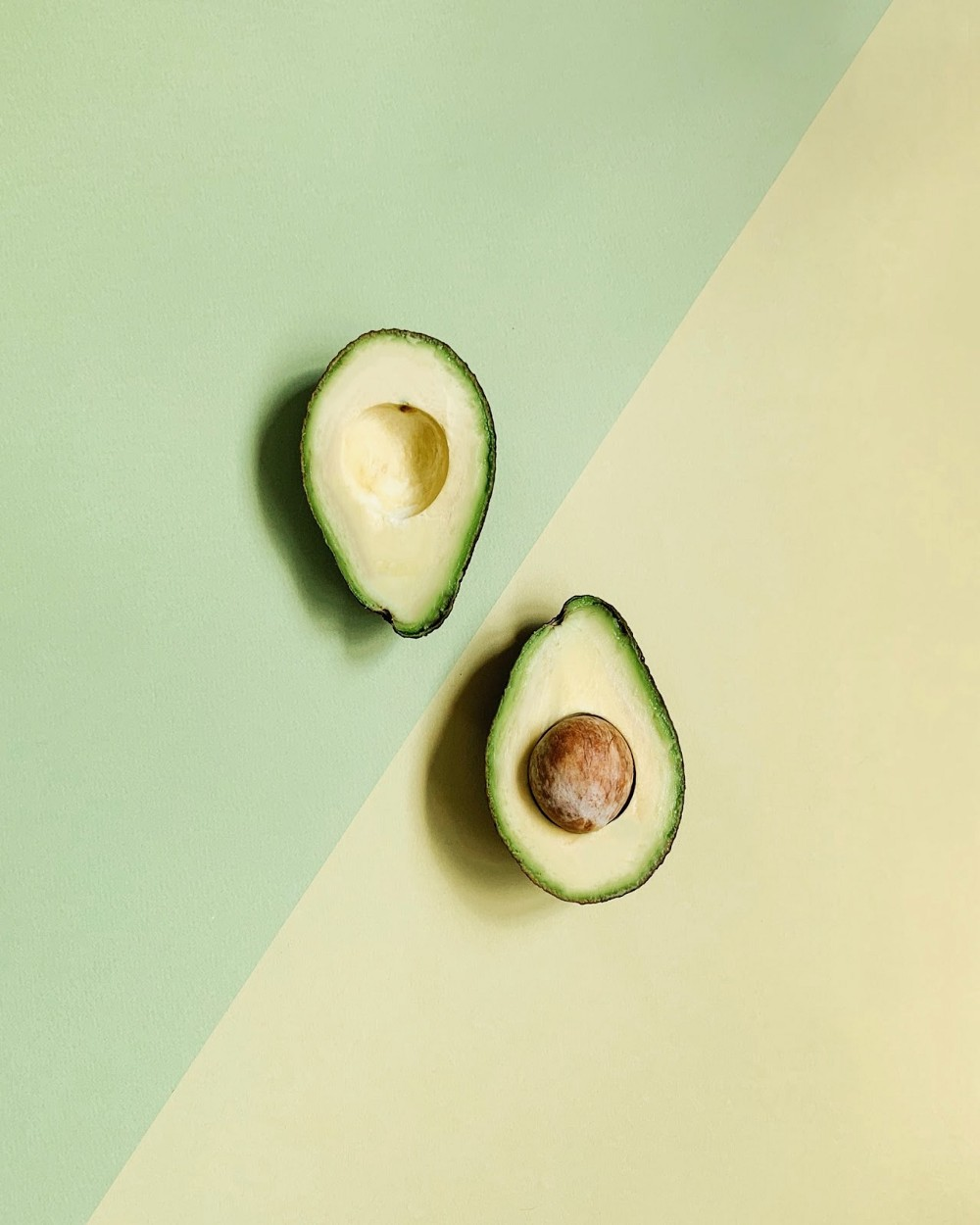 avocado-article-01