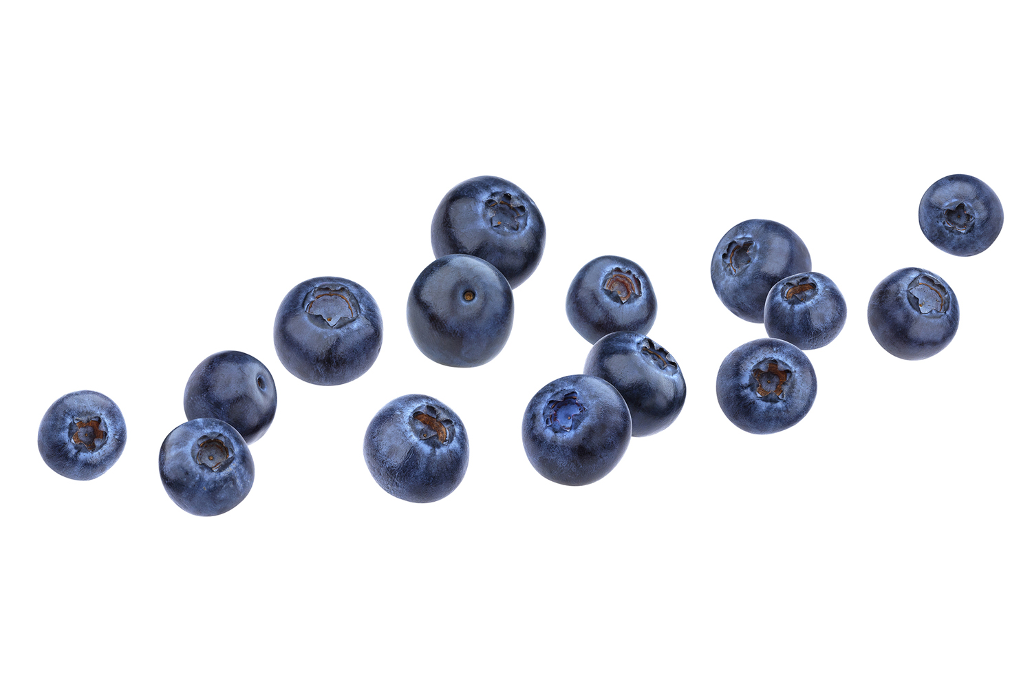 blueberries-xsm