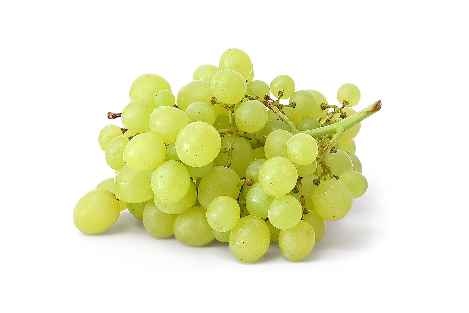 green-grapes-xsm
